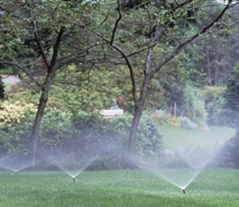 Irrigation Repair and Maintenance